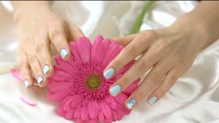Young hands gently touching pink gerbera. Well-groomed manicured hands and gentle flower on white silk background. Female sensuality and purity concept.
