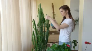 Young woman spraying plant. Busy lady indoors. How much water plants need.