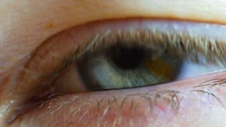 Macro Close Up Of Eye Lid Opening To Reveal Pupil And Iris