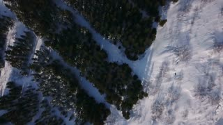 Aerial Drone Flying Above Winter Green Trees In Iceland 1