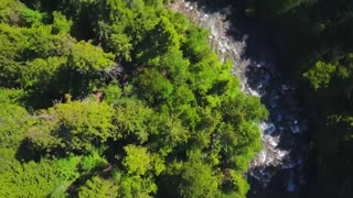 Aerial Drone Topical View Showing Rushing Water Rapids Between Evergreen Forest 2