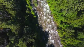 Aerial Drone Topical View Showing Rushing Water Rapids Between Evergreen Forest 1
