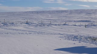 Iceland Panning Across Snow Covered Land With Icelandic Horses 1