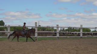 Riding horse. Girl on beautiful horse riding on manege.