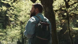 a young man has a backpack on his back, a tourist enjoys the forest landscape and looks at trees that have green branches and leaves, he strolls through the park at the weekend