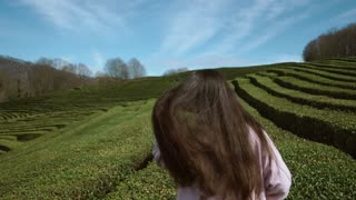 a young woman in sunglasses goes along the green tea plantations in the daytime, on both sides of the lady grow low shrubs of elite green tea