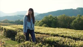 Beautiful brunette girl is walking in field maze between short bushes in summertime. Lovely girl in stylish clothes relaxing walking on terrain.