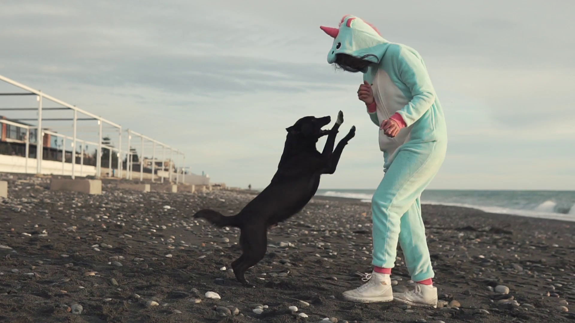 cheerful and funny lady in a kigurumi costume plays with a playful dog by  the sea, a woman and her domestic pet jumping and laughing on a rocky beach  on a sunny