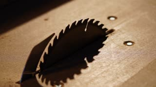 Close-up of disk of industrial stationary circular saw. It is switched off, then it is switching on and starting to rotate