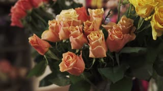 Close up shot of a beautiful roses of different sorts in a flower shop. They are blooming indoor.