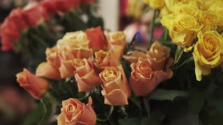 close up shot of flowers of yellow and orange, roses with small buds have a delicious smell, it is natural flowers grown in a cultivated place, roses have green petals