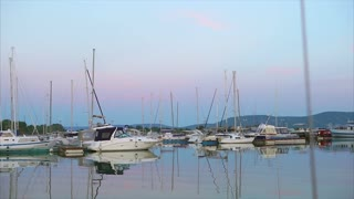 Harbour with many yachts at anchor, evening marine scene