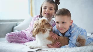 Little brother and sister with dark hair dressed in homemade pajamas strokes a small hairy dog. Kind and lovely babies smile
