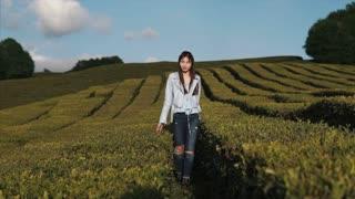 Portrait of stylish brunette woman walking on the tea plantation in summer. Happy girl enjoying spending time outside in nature.