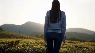 Young woman is rejoicing a sunrise over mountains. She is rising hands up and looking on a picturesque tea plantation, back view