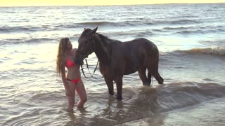 Young sexy woman dressed bikini take care about horse in the river water sunset