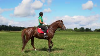 Young woman rider riding a horse on the field