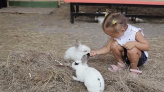 Cute little girl feeding rabbit from the hand