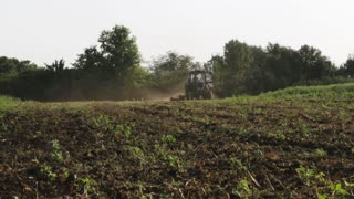 Tractor plowing the black earth plow field at morning overgrown with weeds