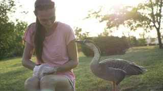 Woman feeding goose from palm but goose attack and plucked when feed is ends