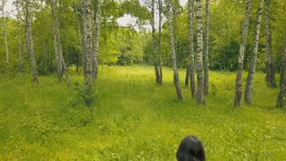 Drone view attractive young woman walking in the woods. Follow me into forest