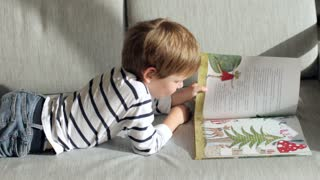Boy Reads a Book Lying on the Sofa