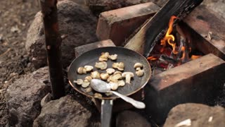 Fried Mushrooms in a Skillet at the Burning Fire in Nature
