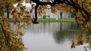 Pond With Birds in the Autumn Park