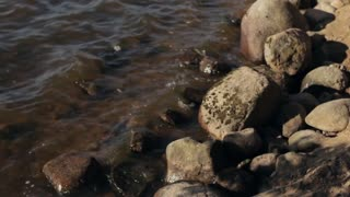 Small Waves at the Rocky Shore of the Lake