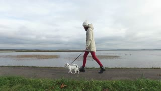 a woman walks with a puppy jack russeil along the waterfront