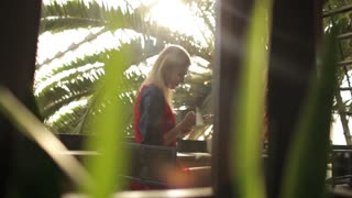 beautiful girl with a phone in a cafe greenhouse
