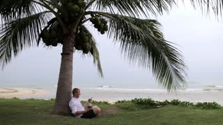 businessman with a coconut and a phone sits under a palm tree on the beach