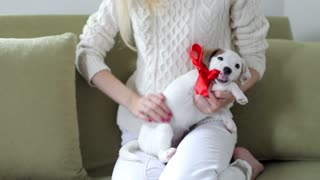 girl with a gift puppy with a red bow