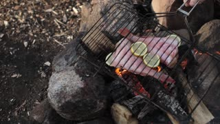 Grilled Fish With Potatoes on the Fire