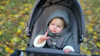 little kid in a carriage in an autumn park