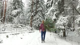 man walking with a Christmas tree in the winter forest