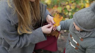 mom and daughter collect autumn leaves