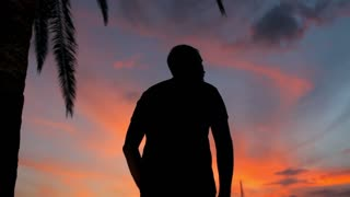 silhouette of a man at a palm tree at sunset