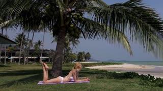 slim woman sunbathing under a palm tree on the beach