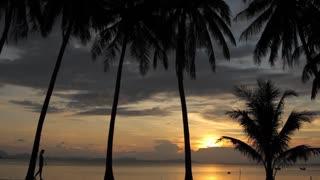 slim woman walking along the beach at sunset