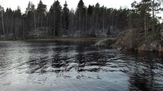 stony shore of the lake with trees