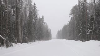Winter Snow-Covered Road in the Forest