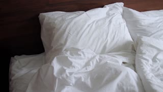White Bed in Hotel
