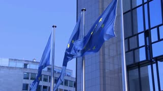 Flags around the European Parliament in Brussels