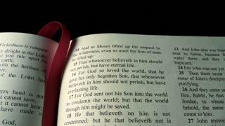 Bible, John 3:16, tilt down