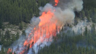 Huge flames of a forest fire on a mountainside.mov