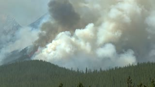 Large plumes of smoke from a forest fire