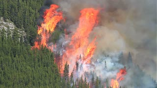 Wild forest fire with huge flames on a mountainside.mov