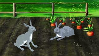 Hares on Carrot Garden