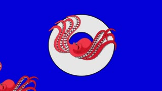 Letter O and Octopus (foreground)	Animated animal alphabet. Motion graphic with chroma key. Animal in a foreground of a letter.